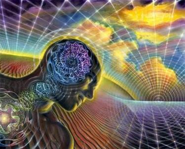 Conscious field - Samantha Bachman
