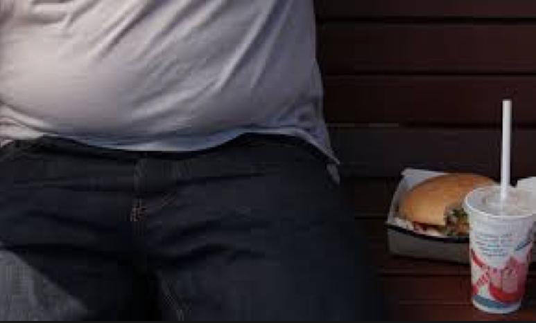 Obesity - Samantha Bachman
